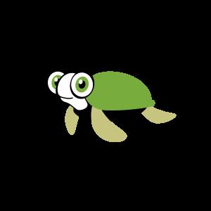 Hier ist eine grüne Schildkröte zu sehen, deren große Augen fragend ins Bild schauen.